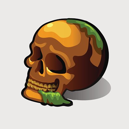 Old human skull, vector image for your needs Clipart Image.