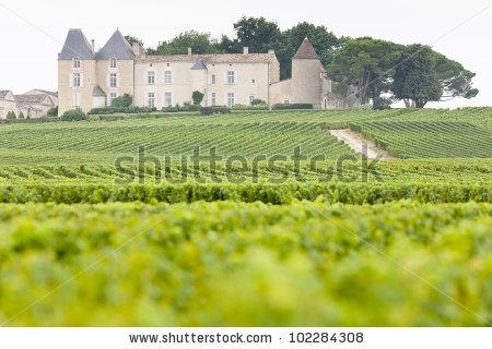 Vineyard And Chateau D'Yquem, Sauternes Region, France Stock Photo.