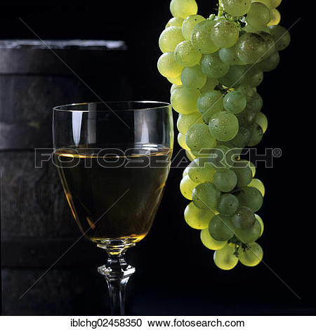 """Stock Photography of """"Glass of white wine, Chateau d'Yquem, grand."""