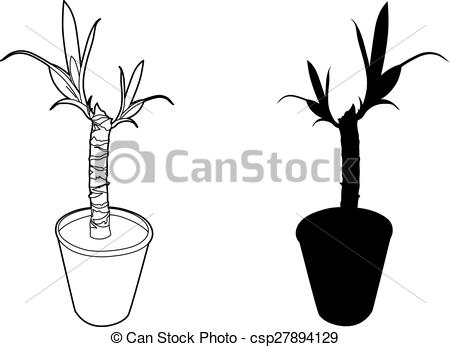 Yucca clipart #5