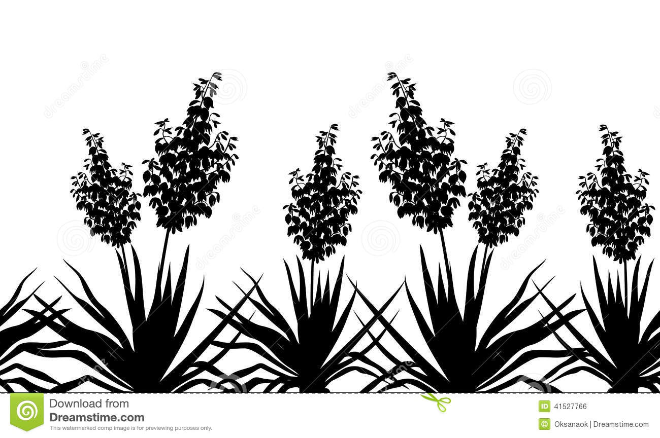 yucca clipart