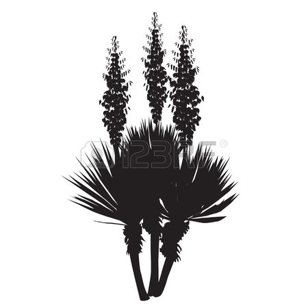 208 Yucca Stock Vector Illustration And Royalty Free Yucca Clipart.