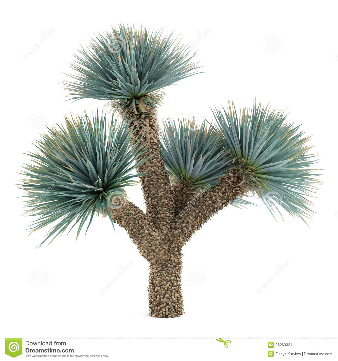 Yucca Flower Clipart.