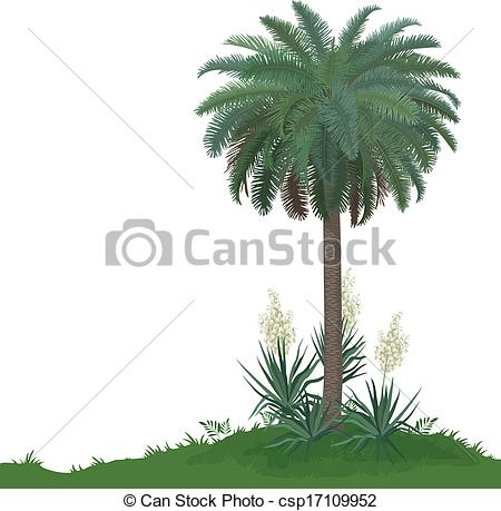 Clipart Vector of Palm tree and plants Yucca.