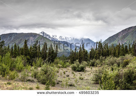 Alaska Highway Stock Photos, Royalty.