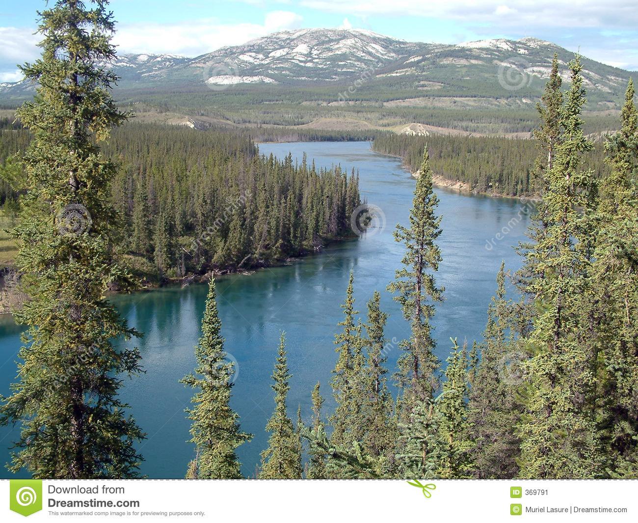 Yukon River Stock Image.