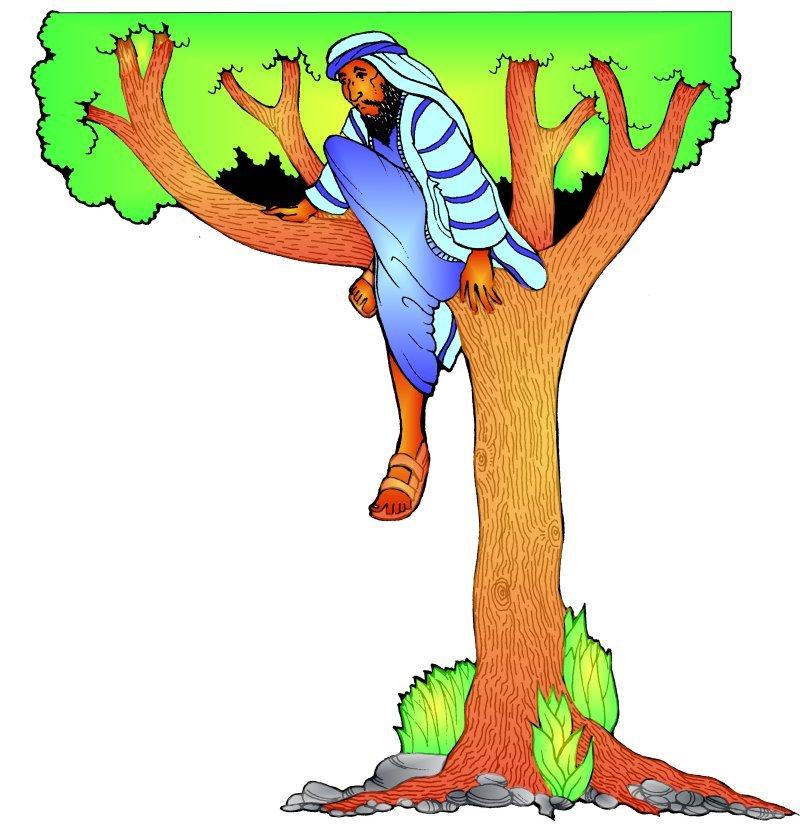 Zacchaeus clipart 7 » Clipart Station.