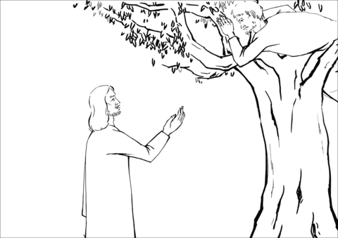 Jesus Asked Zacchaeus to Come Down coloring page.