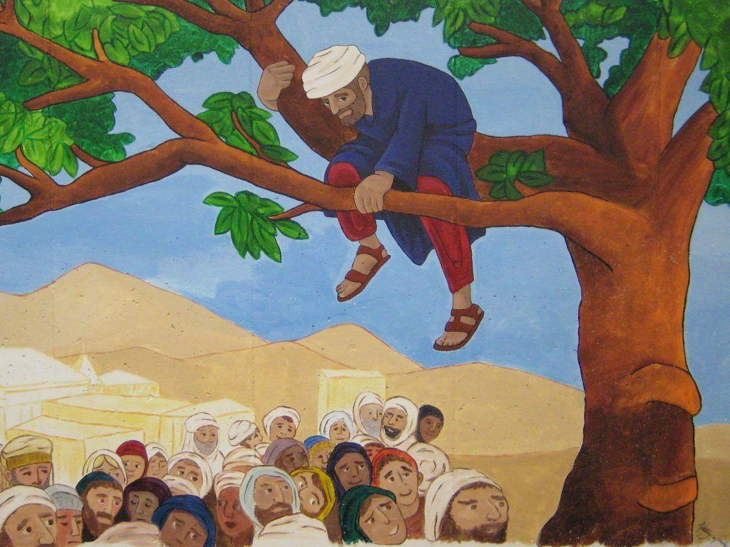 Images For > Zacchaeus Clipart.