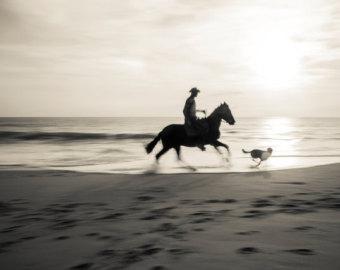 Horse silhouette.