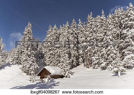 Picture of Hut in winter forest, Venet, Zams, Tyrol, Austria.