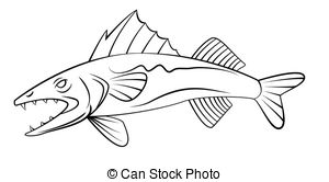 Walleye Clipart and Stock Illustrations. 240 Walleye vector EPS.