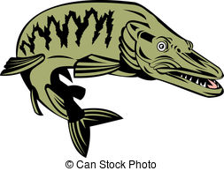 Pike Clipart and Stock Illustrations. 2,038 Pike vector EPS.