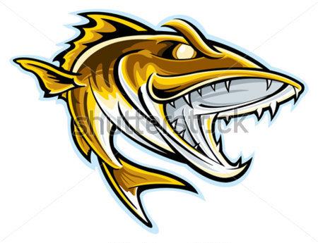 zander clipart clipground walleye clipart free walleye clipart free
