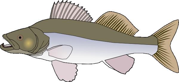 Free Zander Fish Clip Art.