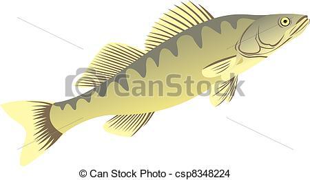 Perch fish Clipart Vector and Illustration. 688 Perch fish clip.
