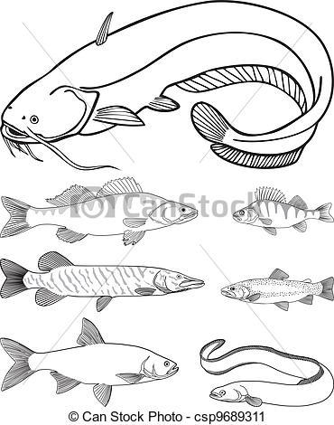 Vector Clip Art of Predatory freshwater fish.