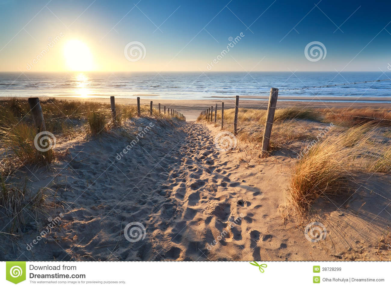 Path To Sand Beach In North Sea Royalty Free Stock Images.