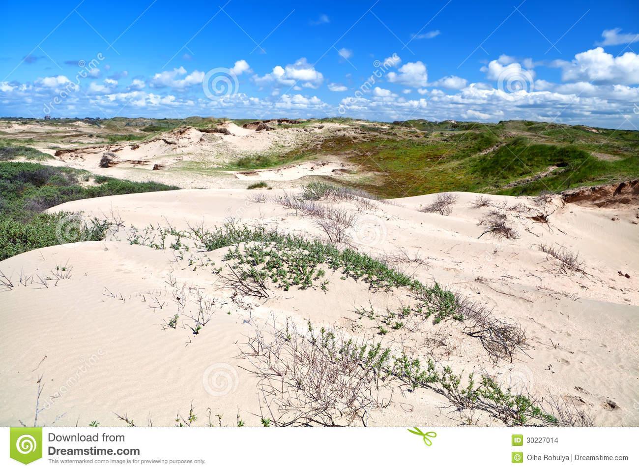 Sand Dunes By Zandvoort Aan Zee Stock Images.
