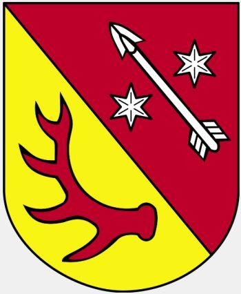 Żary (county).