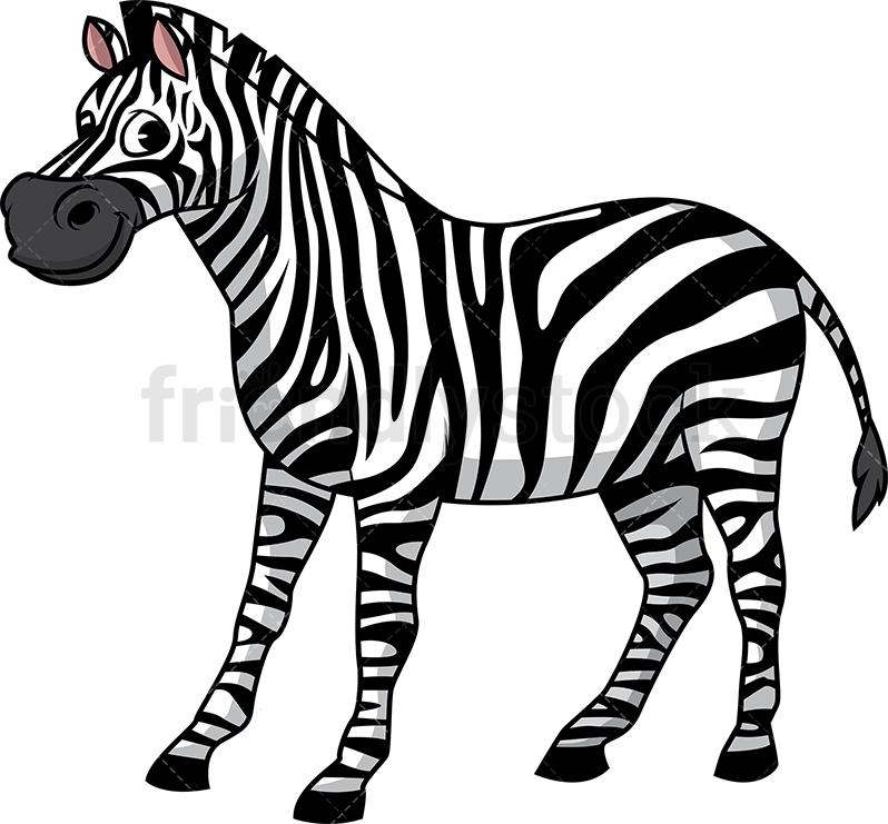 Wild Zebra.