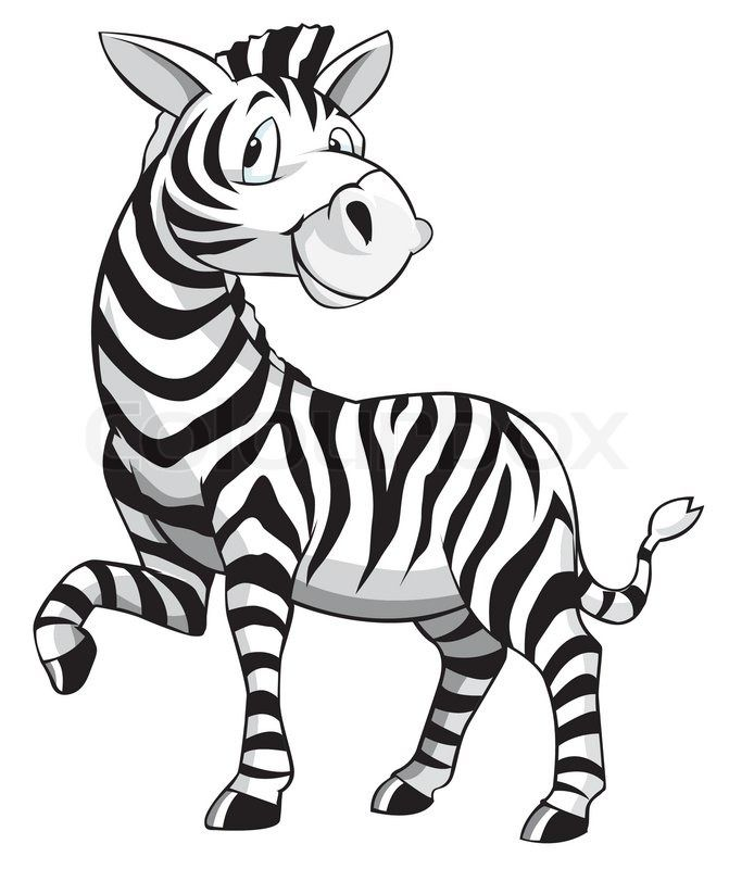 Zebra Cartoon.