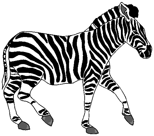 herd of zebras clipart - Clipground