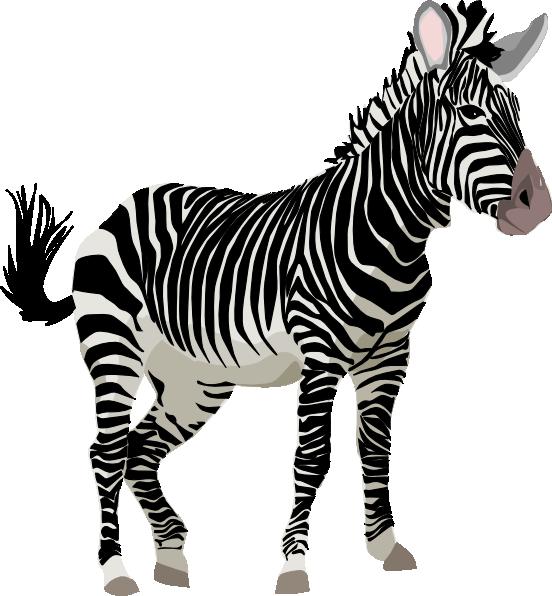Cute Zebra Clipart.