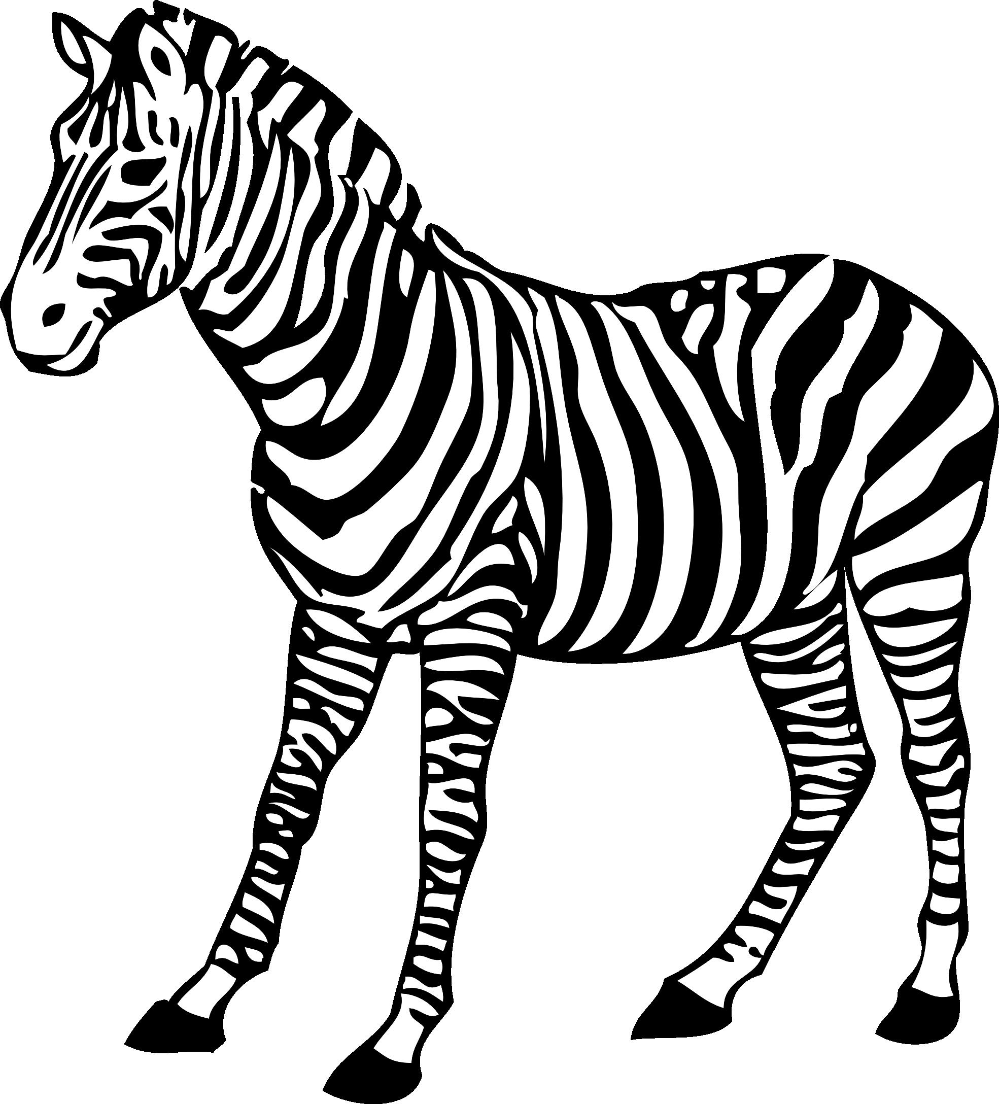 Clipart Of Zebra Black And White.