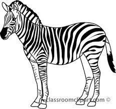Zebra clipart black and white 5 » Clipart Portal.