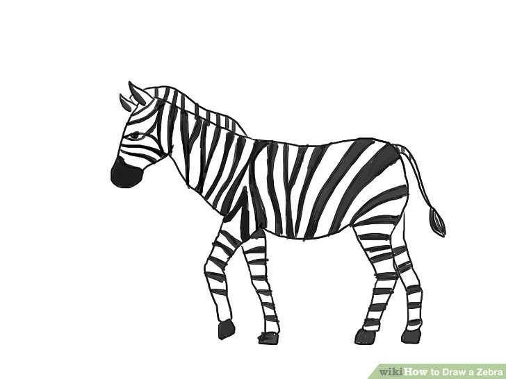 How to Draw a Zebra (with Pictures).