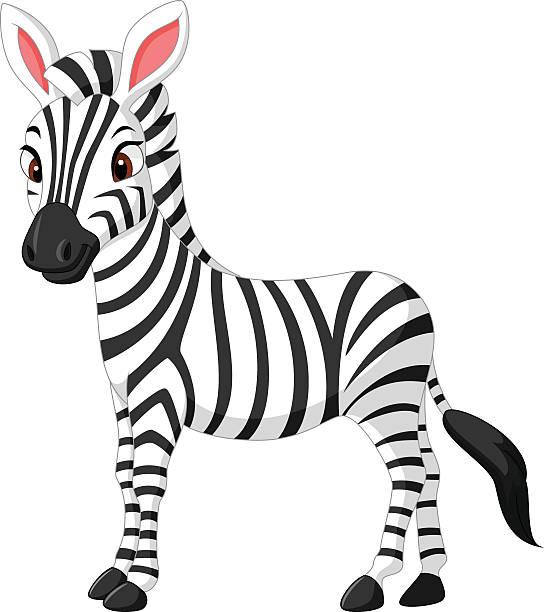 Zebra In Clipart.