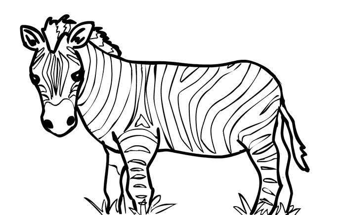 Zebra Outline Png & Free Zebra Outline.png Transparent Images #3928.