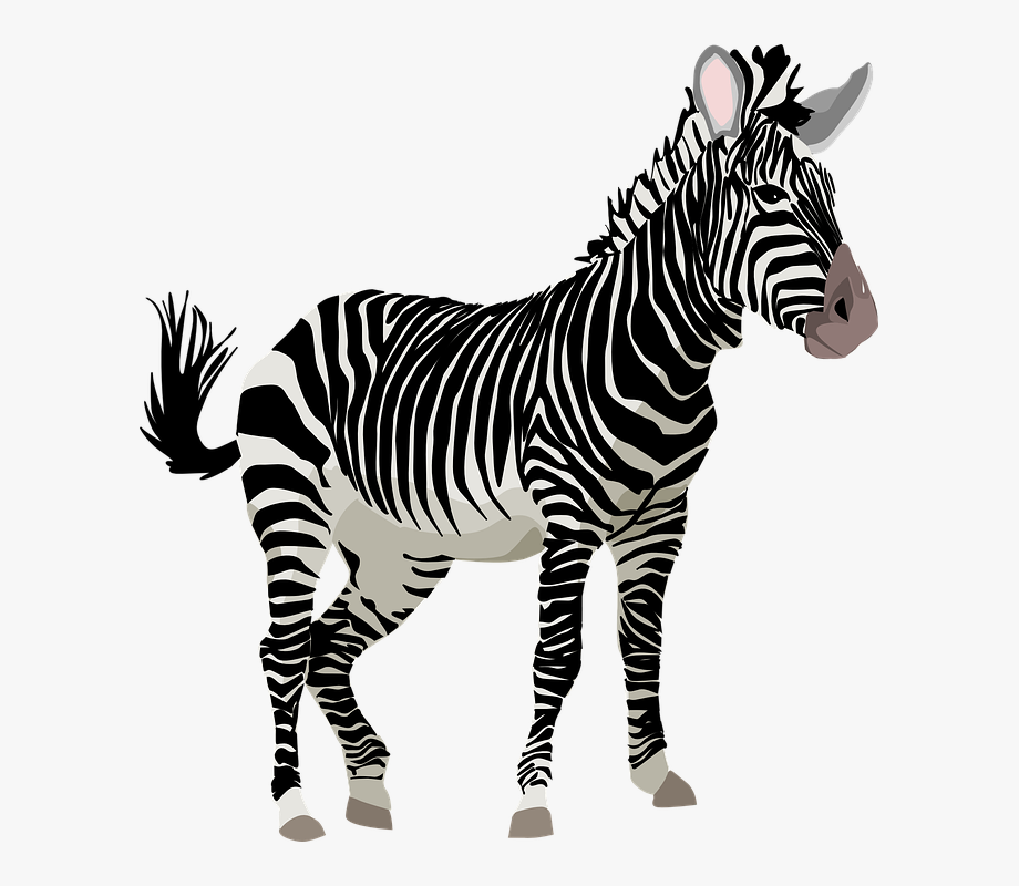 Cute Zebra Clipart Free Clipart Images.