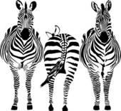 Zebra Clip Art.