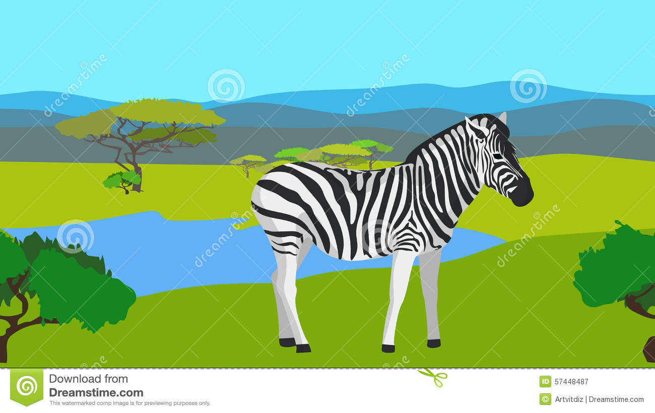 Zebra In The Field With Green Grass, Horizontal Stock Vector.