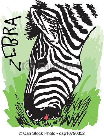 Clipart Vector of Zebra eating grass. Vector illustration.
