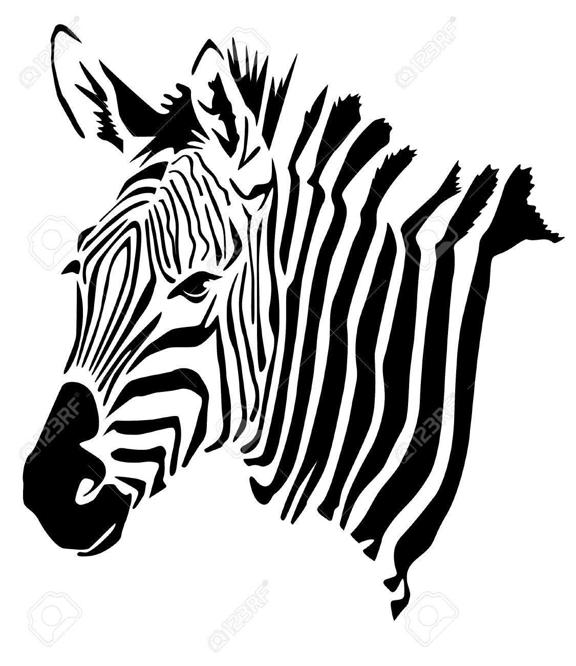 Zebra Head.