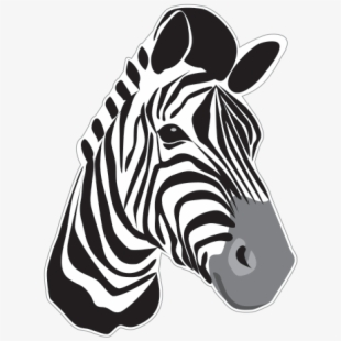 Outline Of A Zebra Head Royalty Free Clipart Picture.
