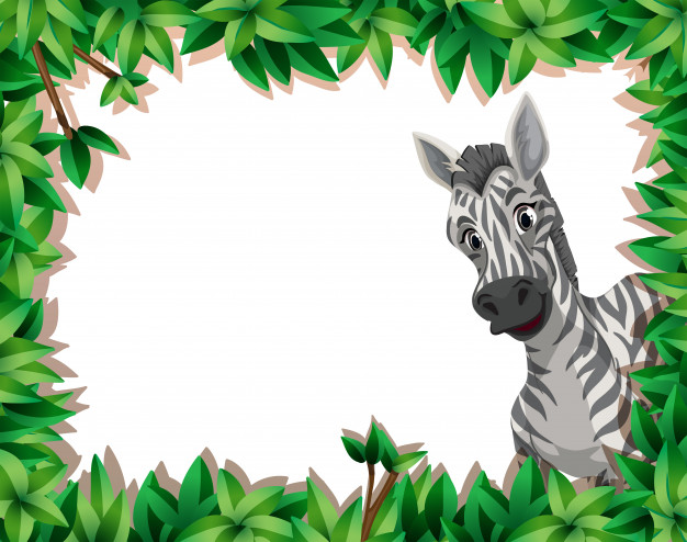 Zebra in nature frame with copyspace Vector.
