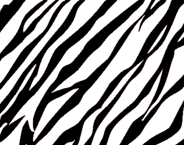 Zebra Print Background.