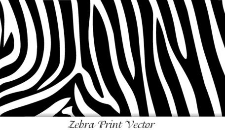 Zebra Print Clipart Picture Free Download.