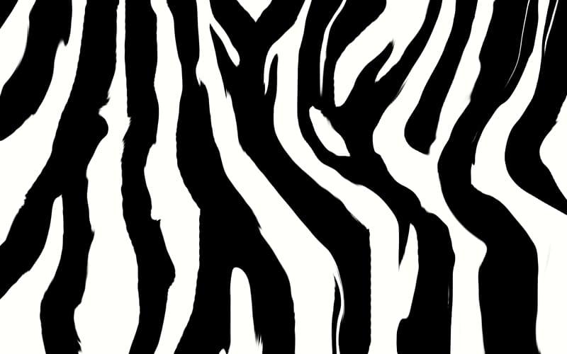 Animal print Zebra Desktop , Zebra Print transparent.