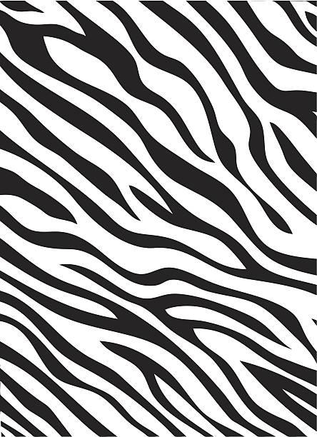 Best Zebra Print Illustrations, Royalty.
