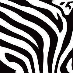 Zebra Print Cliparts.