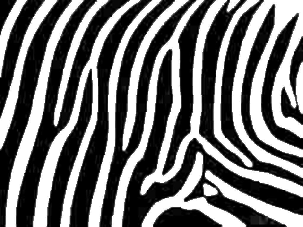 Zebra print clipart 2 » Clipart Station.