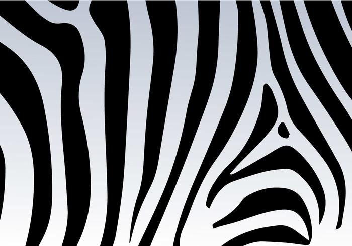 Zebra Print Vector Background.