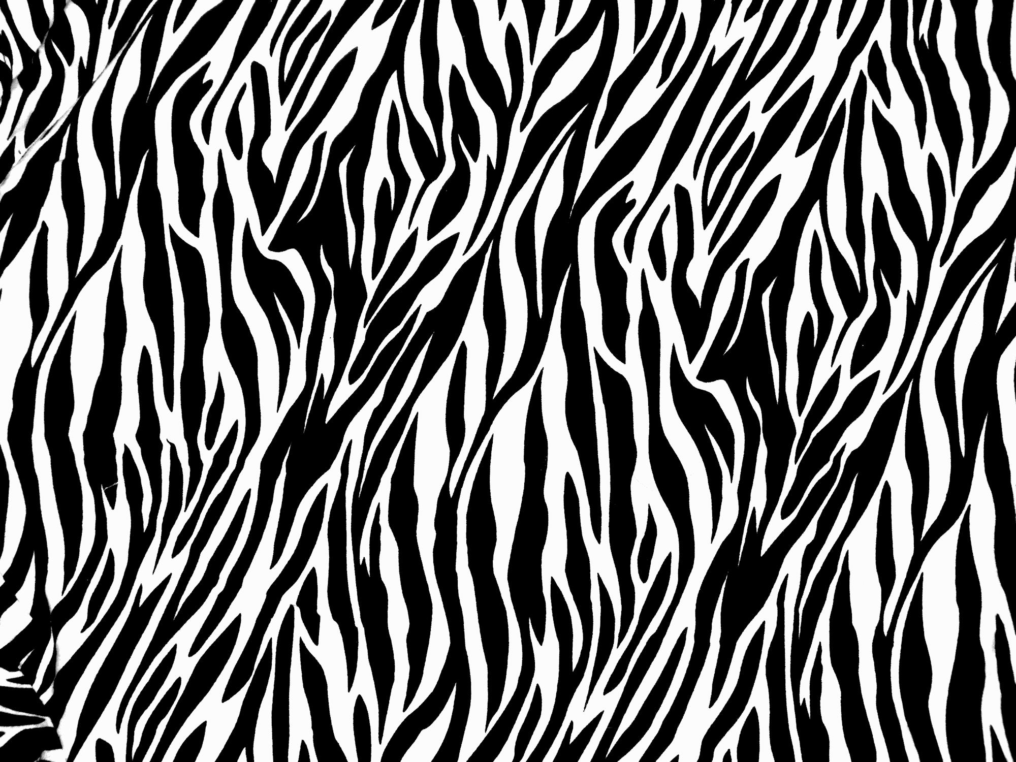 Zebra Print PNG Transparent Zebra Print.PNG Images..