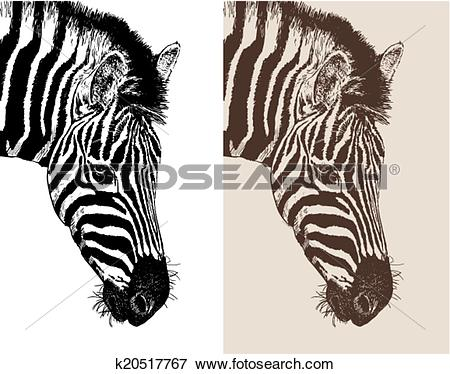 Clip Art of artwork head profile zebra k20517767.
