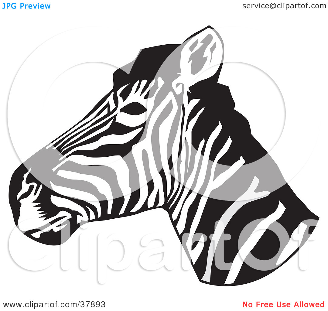 Clipart Illustration of a Black And White Zebra Head In Profile by.